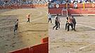 Activista saltó las gradas de la Plaza de Acho para protestar contra las corridas de toro [VIDEO]
