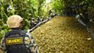 Seis narcos controlan la mitad de toda la droga que sale del Vraem