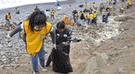 Convocan a voluntarios para limpieza de playas este sábado