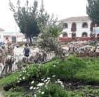 Diálogo en Las Bambas se pondría en riesgo si se radicalizan posiciones