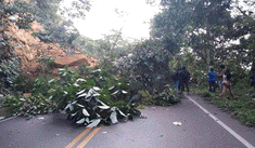 Vía que une Yurimaguas - Tarapoto colapsa tras sismo de 7.5 grados en Loreto