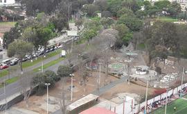 Jesús María: vecinos se quejan por falta de riego en áreas verdes