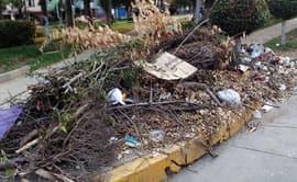 Ciudadanos piden que se recoja basura de las calles de San Luis