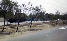 #YoDenuncio: áreas verdes de Comas lucen abandonadas
