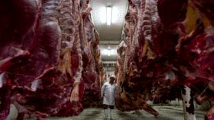 Poner la carne en la balanza