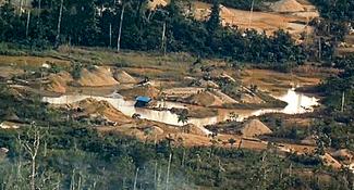 La minería ilegal arrasa los bosques