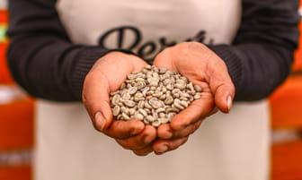 Domo Perú Produce impulsará ventas de café, cacao y alimentos saludables [FOTOS]