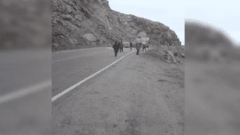 Arequipa: Vehículos varados por derrumbe en carretera