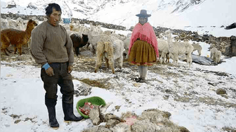 Cusco: Nevadas causan la muerte de 4 pasajeros