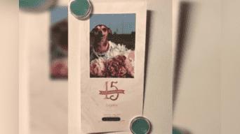 Una mujer decidió organizarle una'quinceañera' a su perrita chiguagua, sin imaginar que provocaría una avalancha de críticas en Facebook. Foto: Captura.