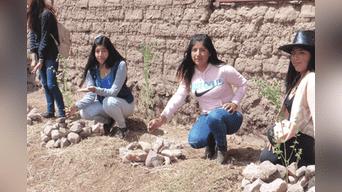 Puno: capacitan a estudiantes universitarios y soldados del ejército para actividades de forestación.