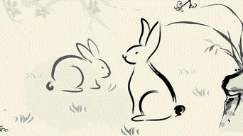 horoscopo-chino-2019-conejo