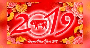Horóscopo Chino 2019 Rata