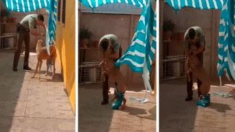 Facebook viral  policía rescata a perro atrapado en una malla y ... 8d474e28de7