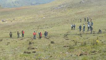 Se instalaron 50 mil plantones de pino radiata y 15 mil de eucalipto en Santiago de Chuco.