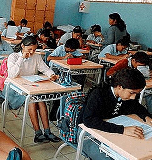 Más de 1.300 estudiantes de SMP y SJM afectados por colegios informales