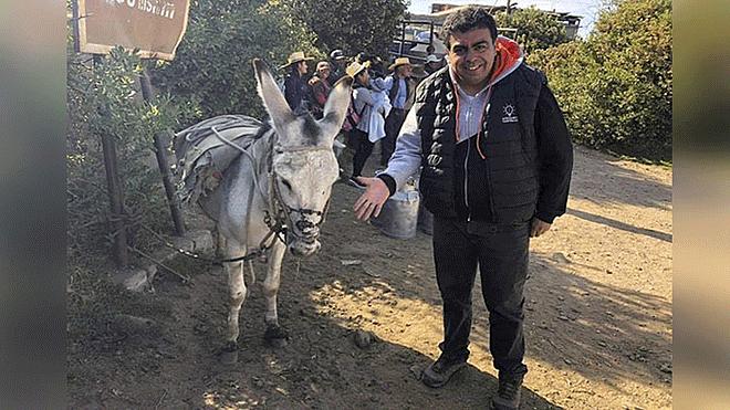 Arequipa: Foto de Ísmodes saludando a un burro causa diversos comentarios en Facebook