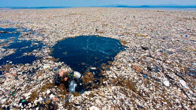 isla pacífico plastico