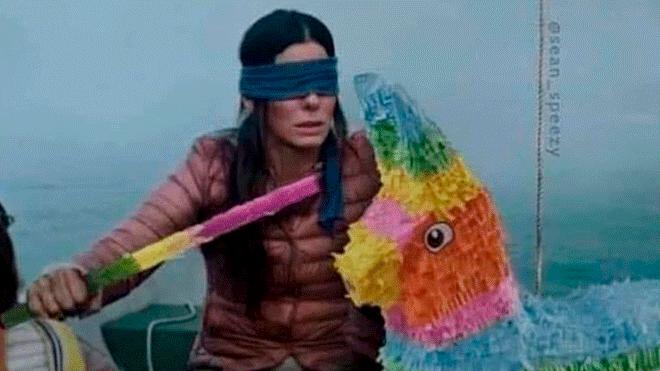 Bird Box Funny Memes Mocks The Netflix Movie With Sandra Bullock