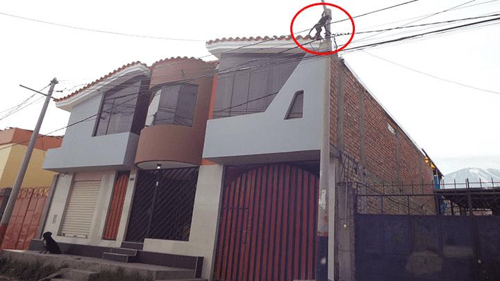 El mono solía trepar los techos y colgarse de los cables.