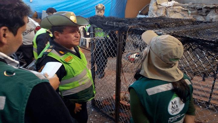 Serfor intervino la vivienda en Miraflores